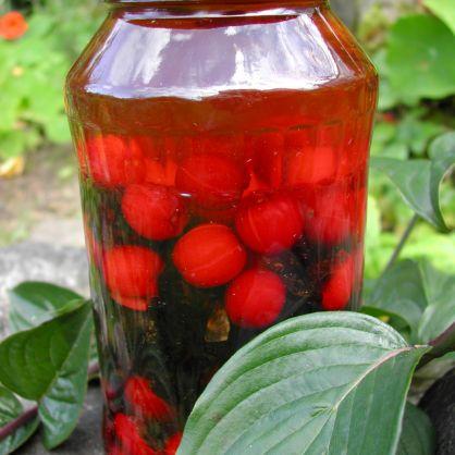 Fabelhaft Kornelkirschenlikör | Heilpflanzen-Zubereitungen @EU_57